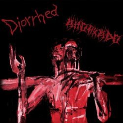 DIORRHEA / AHORKADO - split CD